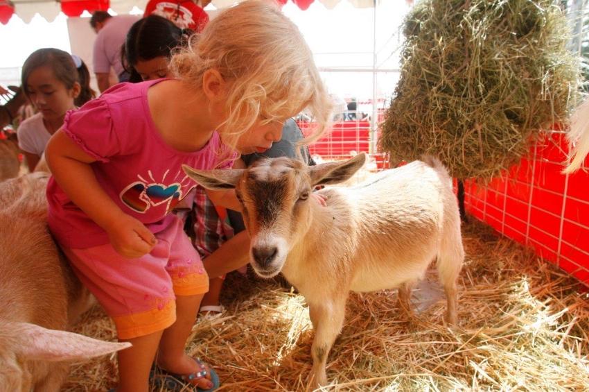 Americas Family Pet Expo