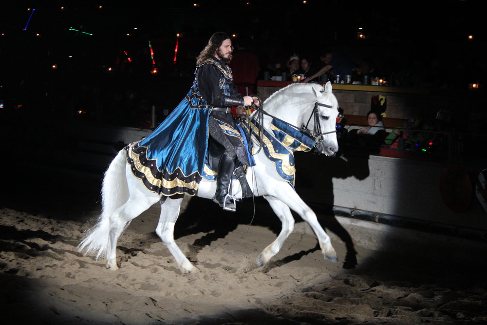 The Andalusians are masters of grace and strenght