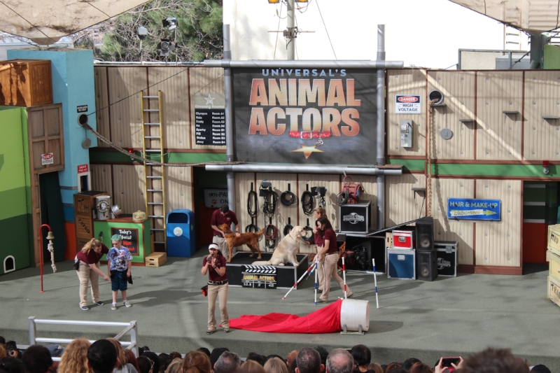 Universal's Animal Actors:  Show lenght 20 Min.