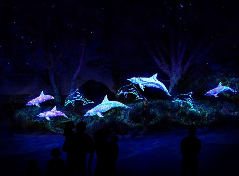 Photo via Seaworld Electric Ocean