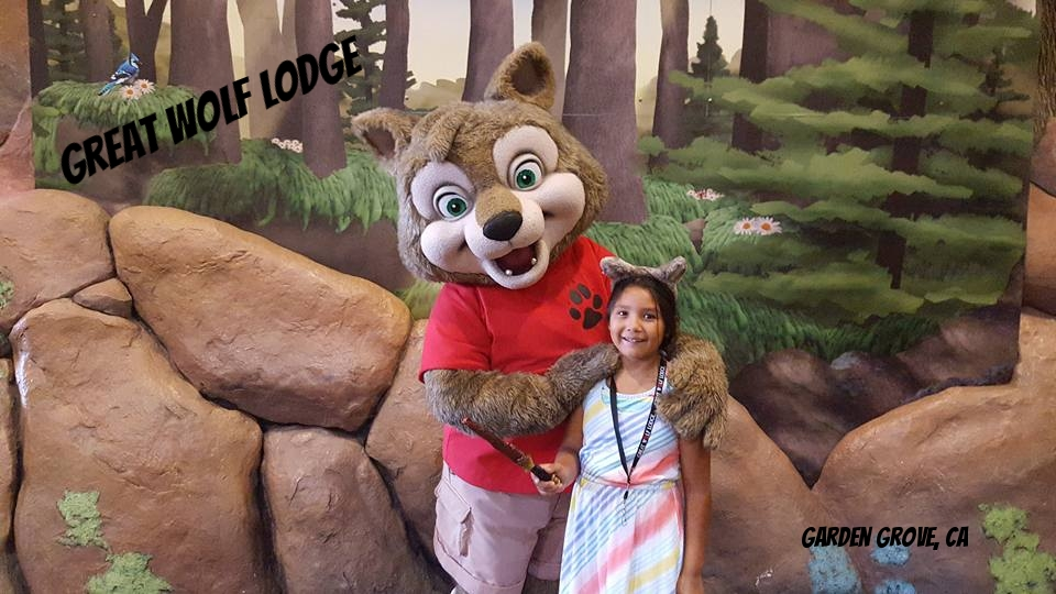 Become A Member Of The Wolf Pack At Great Wolf Lodge Cleverly Catheryn