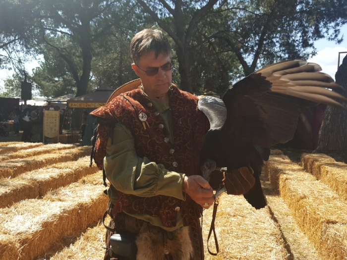 Falconry Show at the Renaissance Faire
