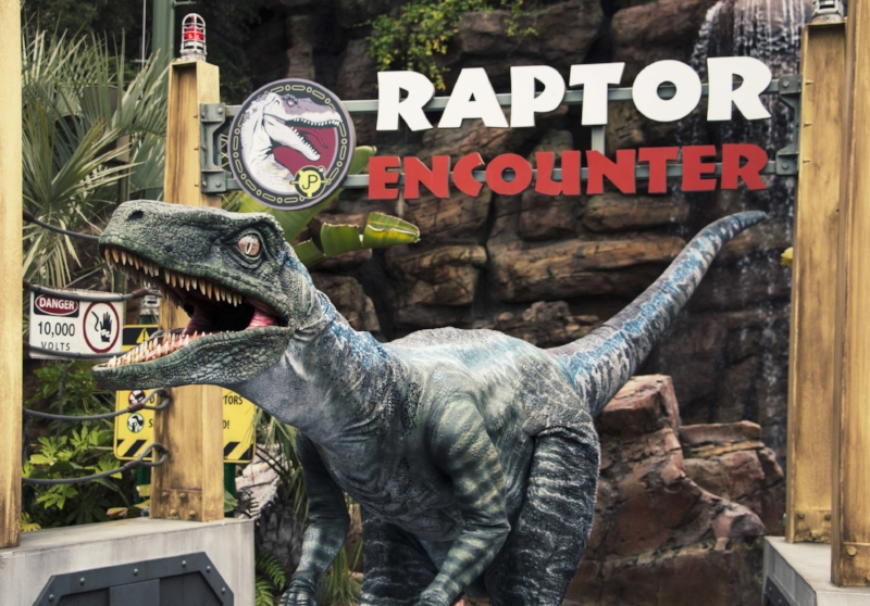 Blue at Raptor Encounter - Universal Studios.jpg