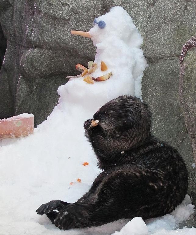 Otter & Snowman.jpg