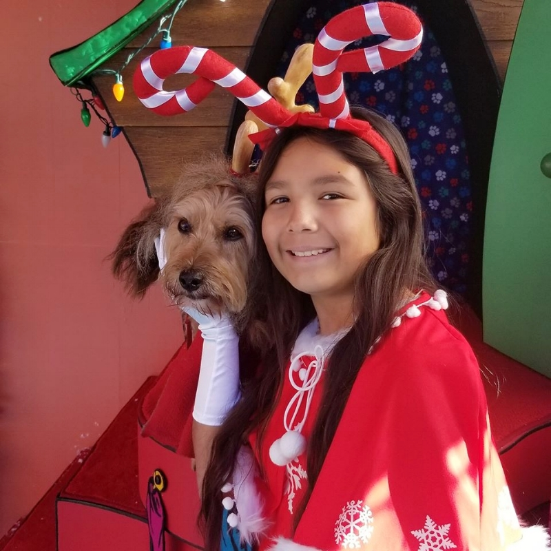 Max the Dog at Grinchmas Universal Studios Hollywood (c) Cleverly Catheryn