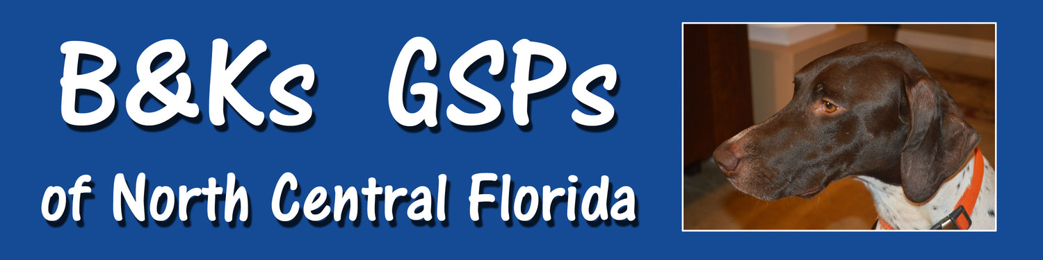 B&Ks GSPs of North Central Florida