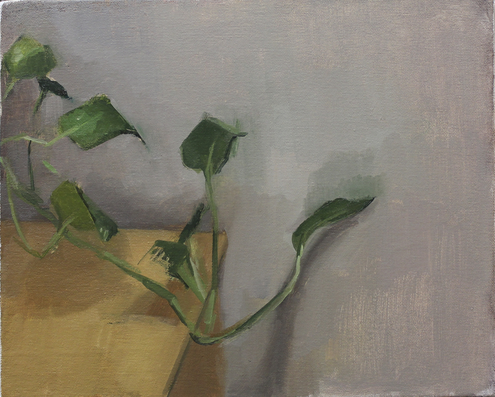 "ivy   oil on canvas  11x14""  2012"