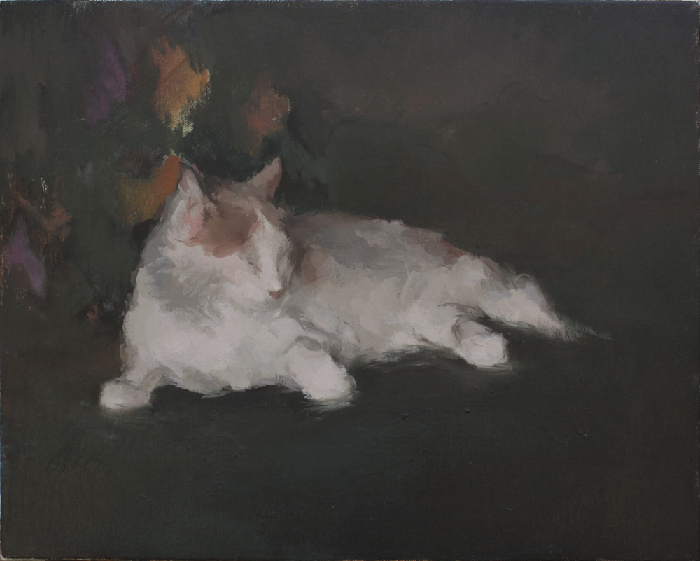 "Jack Bird's Cat   oil on canvas  14x18""  2013"