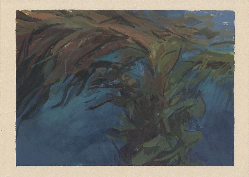 "kelp   gouache on paper  4.25x6""  2013"