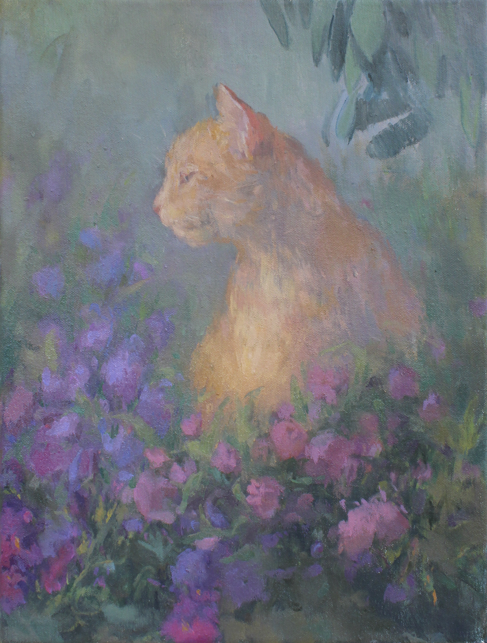 """orange tabby  oil on canvas 16x20"""" 2016  Private collection TN"""