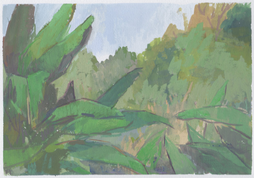 "banana trees  gouache on paper 7x10.25"" 2017  private collection Nashville, TN"