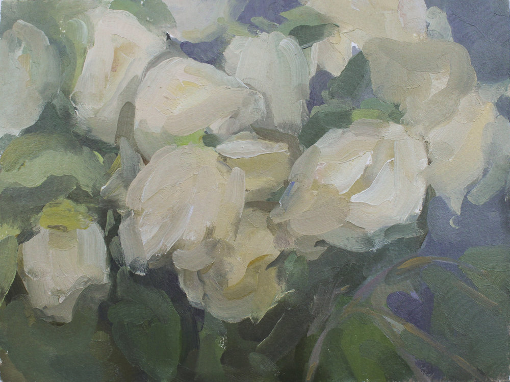 "soft white roses   oil on paper  8x10""  2017"