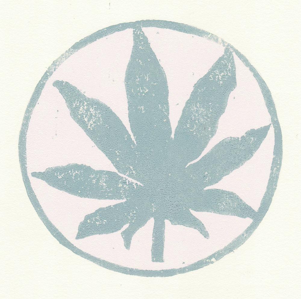 hemp leaf_close up.jpg