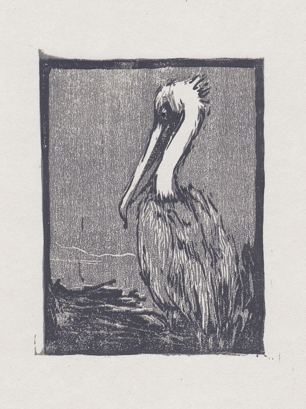 "brown pelican   woodblock print  edition of 40  3x4""  2013"