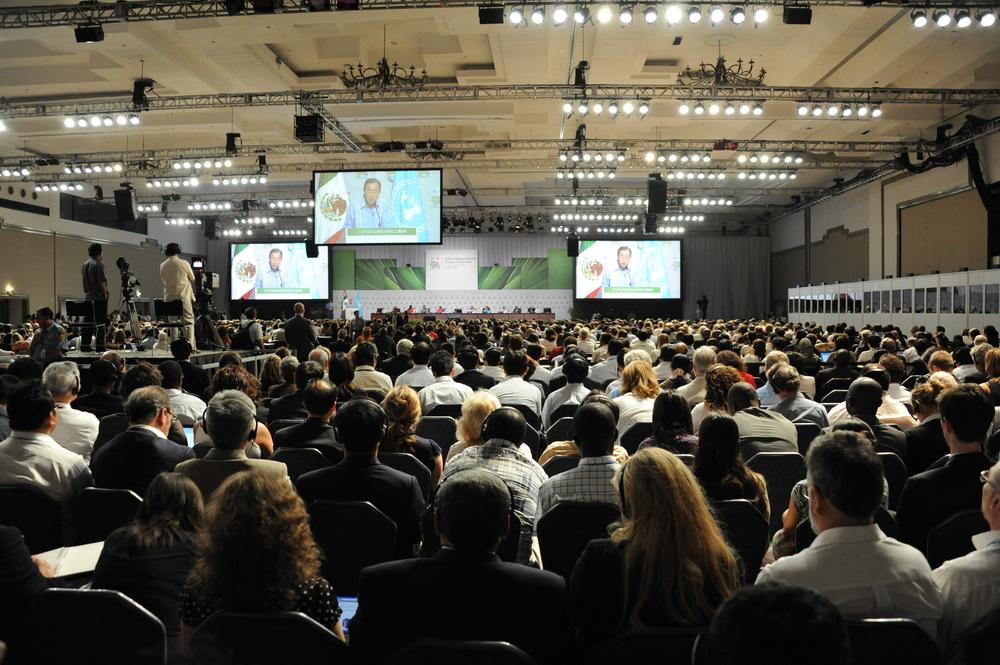 2010_UN_Climate_Talks.jpg