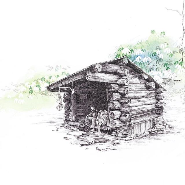"""This is the first shelter drawing I made, completed in August 2016. The year before I created this, I was hiking the Appalachian Trail somewhere in Maine, approaching the end of the 2,200+ mile trek. Thinking about where I had been just the year before, then where I was and what was happening when I made this drawing, and where I find myself now as this project is coming to a close, I'm at a loss for words — so many things have happened in such a short stretch of time. I'm grateful to all of you who have helped me not only through so many different changes but also for cheering me on through what turned into the most difficult project I've attempted to date. Thank you. ❤️ . """"Hiker Trash: Notes, Sketches + Other Detritus from the Appalachian Trail"""" is on track, friends, and set to publish Fall 2019! . Pictured, details of: """"Comrade & Rhododendrons, Cold Spring Shelter, North Carolina - March 27, 2015. [35.23109, -83.55996]"""" Pen & acrylic. . . . #hikertrash #mountaineersbooks #appalachiantrail #campishome #thruhiking #backpacking #penandink #illustration #hikeon #wildworld"""