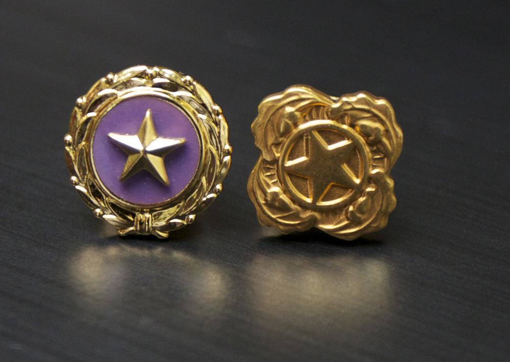 The Gold Star and Next of Kin Lapel Pin