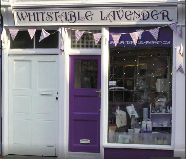 whitstable-lavender