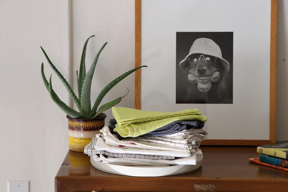 Frig Portrait Cactus.JPG