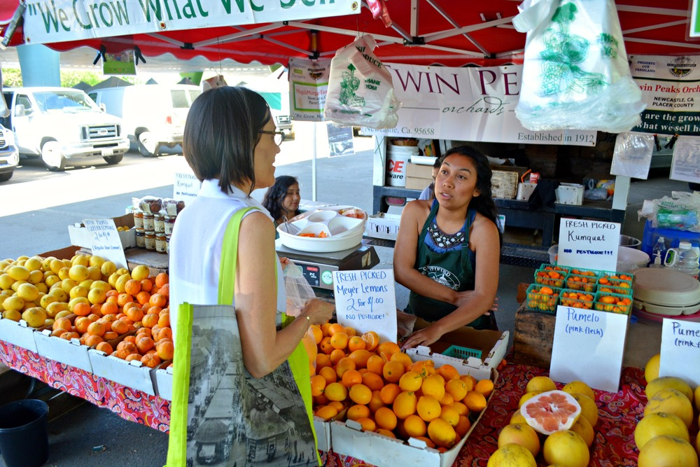 Shopping at the Sunday Farmers' Market for fresh ingredients