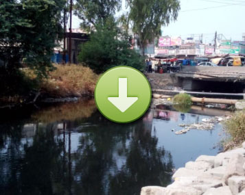 BIOREMEDIATION of this polluted water Drain occurred quickly due to nualgi lakes (click image to view)