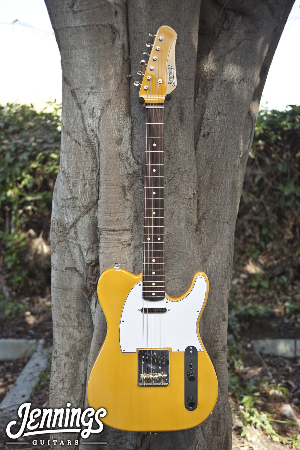 T-style- Butterscoth w/ Mcnelly A5 Pickups