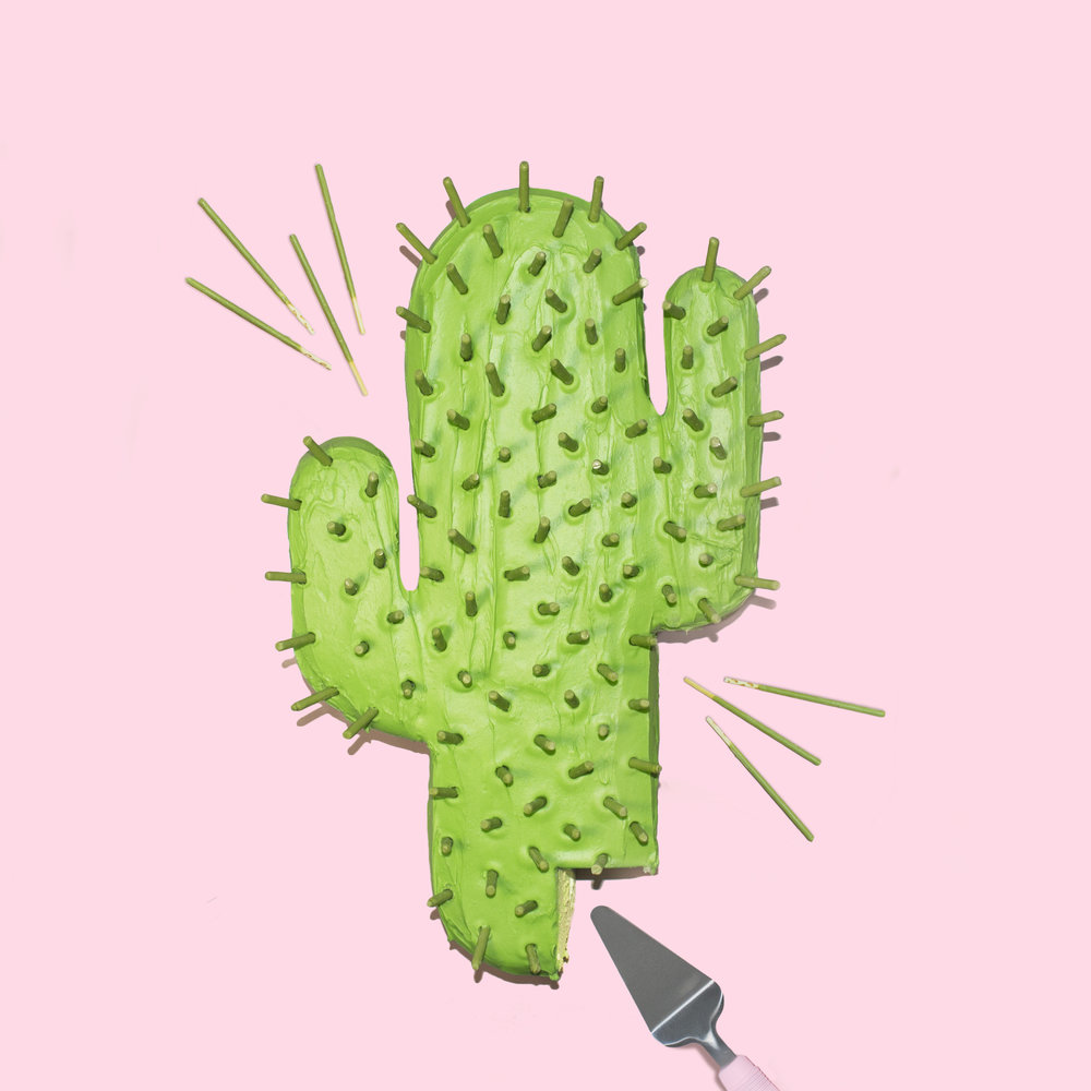 cactus-cake-cut.jpg
