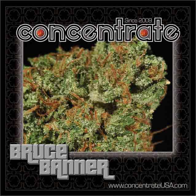 conc-brcbnnr2-rgb.jpg