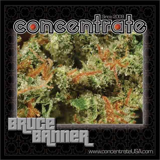 conc-brcbnnr1-rgb.jpg
