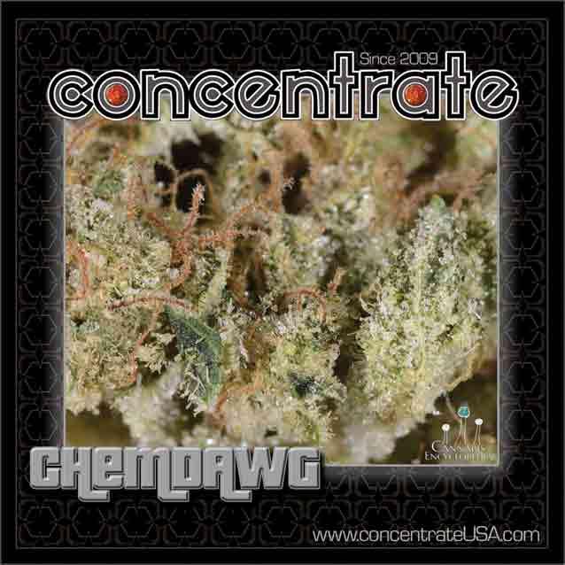 conc-chmdwg7-rgb.jpg