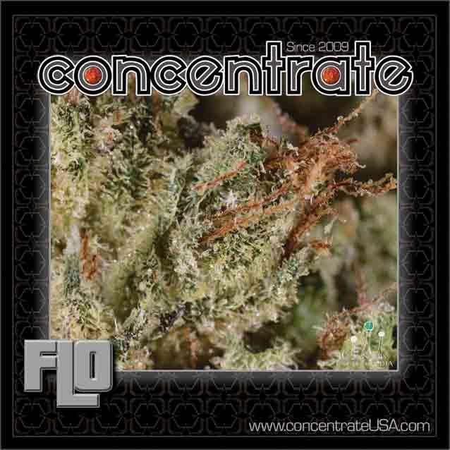 conc-flo4-rgb.jpg