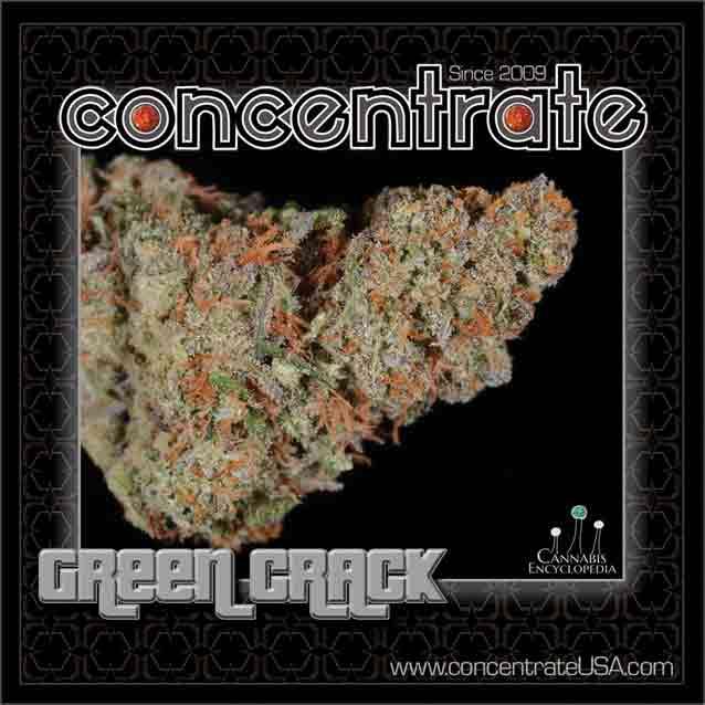 conc-grncrck3-rgb.jpg