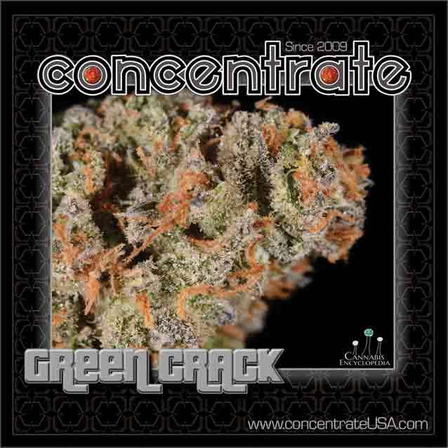 conc-grncrck4-rgb.jpg