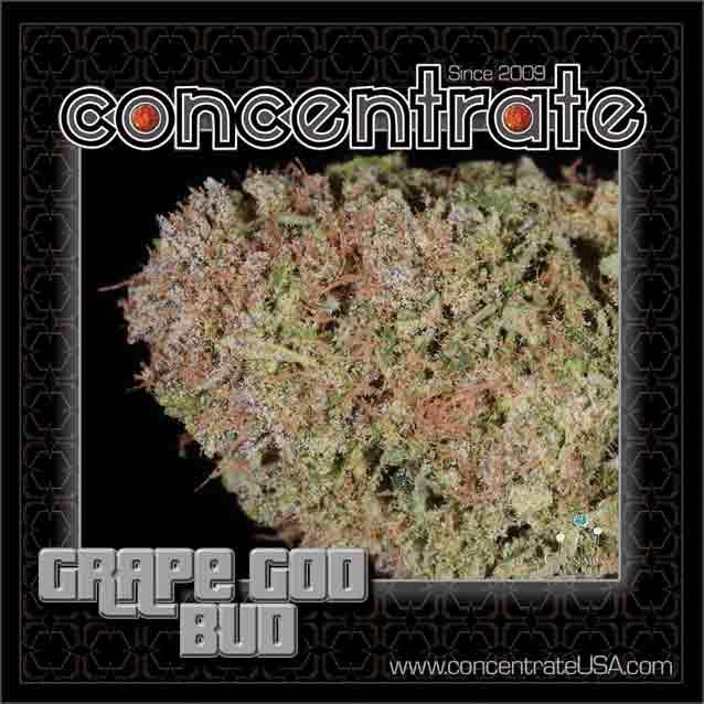 conc-grpgdbd5-rgb.jpg