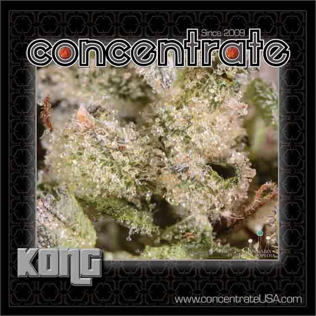conc-kong4-rgb.jpg