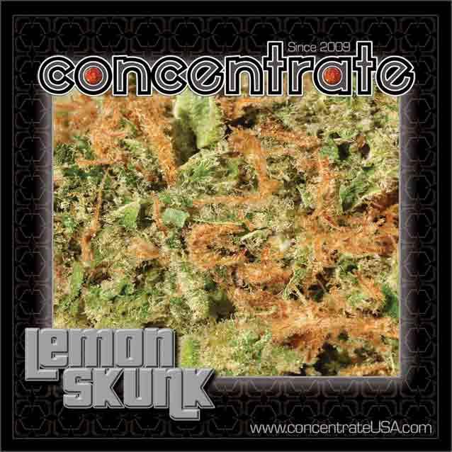 conc-lmnsknk3-rgb.jpg