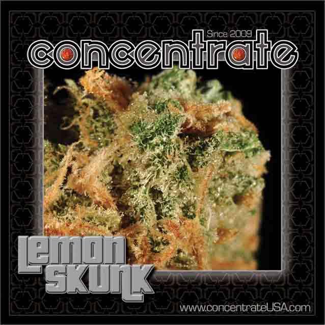 conc-lmnsknk4-rgb.jpg