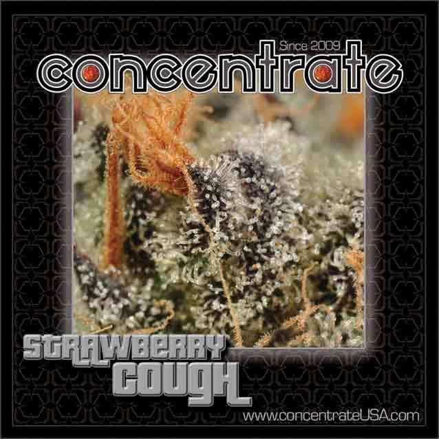conc-strwbrycgh4-rgb.jpg