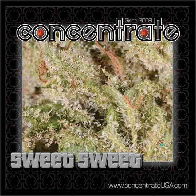 conc-swtswt5-rgb.jpg