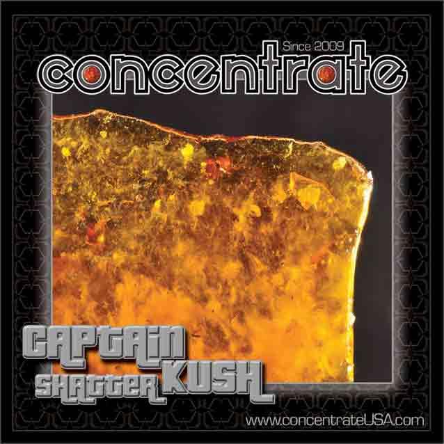 conc-capnkshshtr3-rgb.jpg