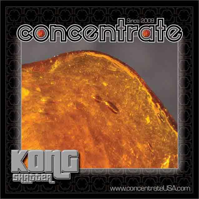 conc-kongshtr1-rgb.jpg