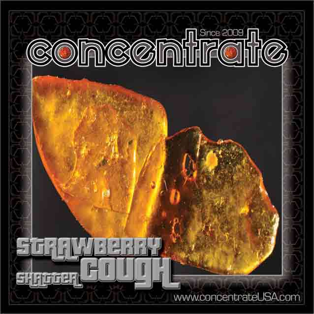 conc-strwbrycghshtr2-rgb.jpg