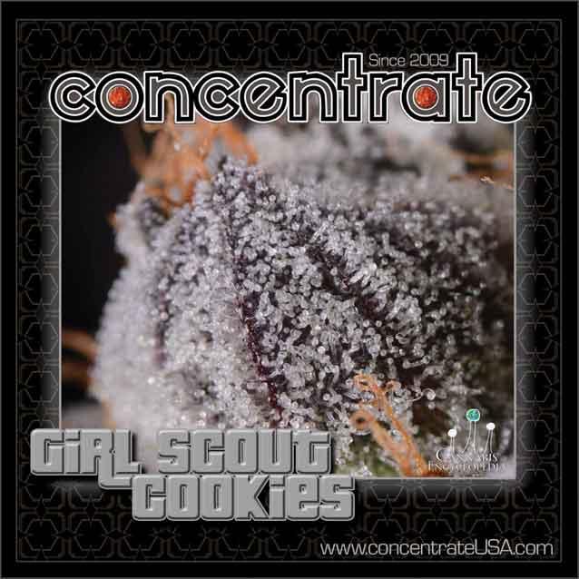 conc-grlsct-live-5-rgb.jpg
