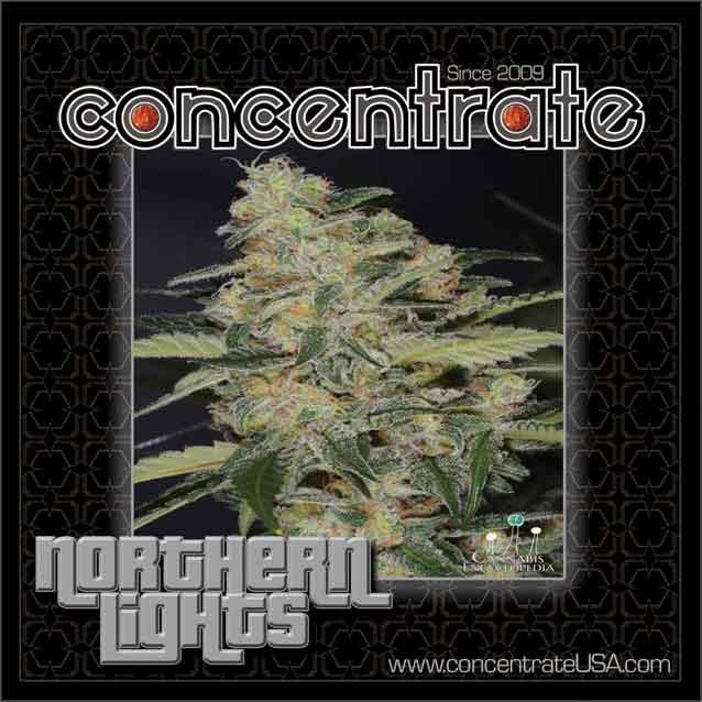 conc-nrthrnlts-live-2-rgb.jpg
