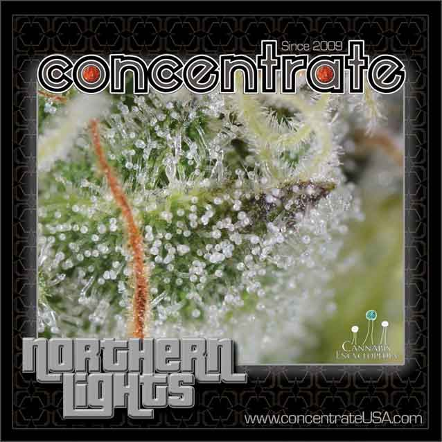 conc-nrthrnlts-live-5-rgb.jpg