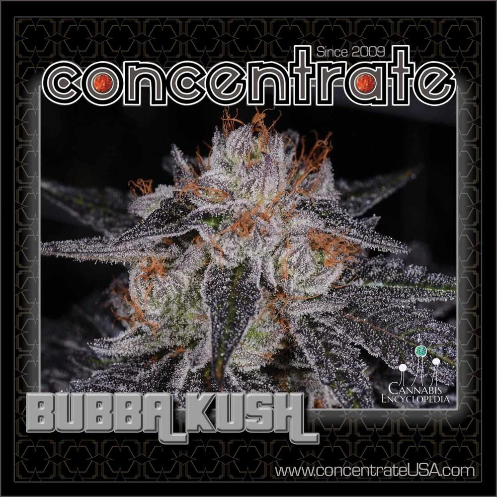 conc-bubaksh-live-3-rgb.jpg