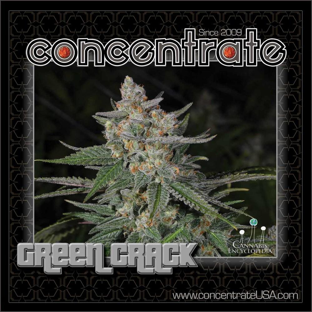 conc-grncrck-live-3-rgb.jpg