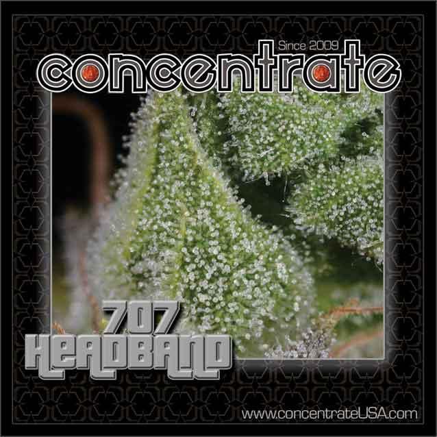 conc-707hb-live-4-rgb.jpg