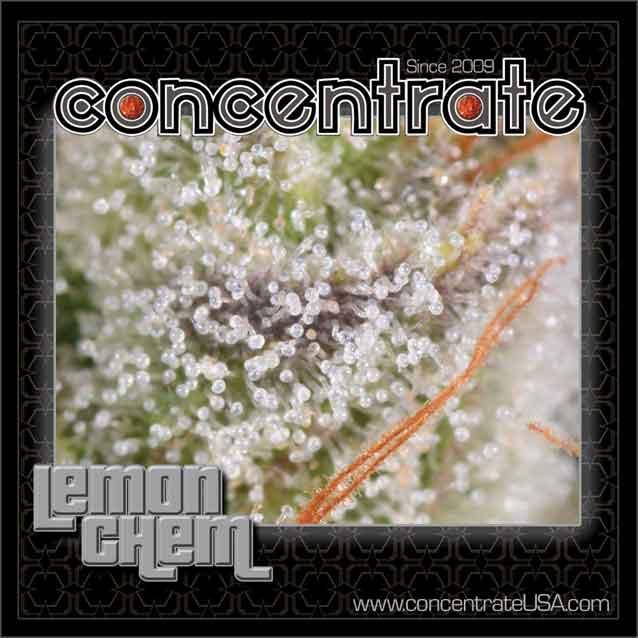 conc-lemchem-live-7-rgb.jpg