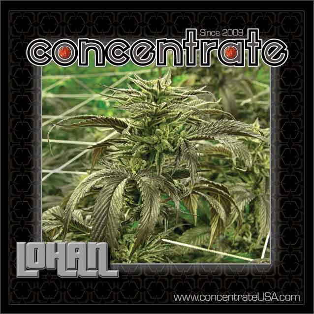 conc-lohan-live-1-rgb.jpg